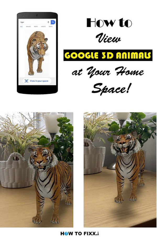 How To View Google 3d Animals At Your Home Space In 2020 Google 3d List Of All Animals Animals