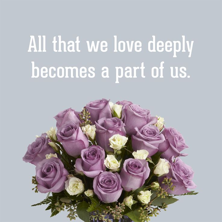 Quotes About Bouquets Of Flowers: 24 Best Beautiful Quotes Images On Pinterest