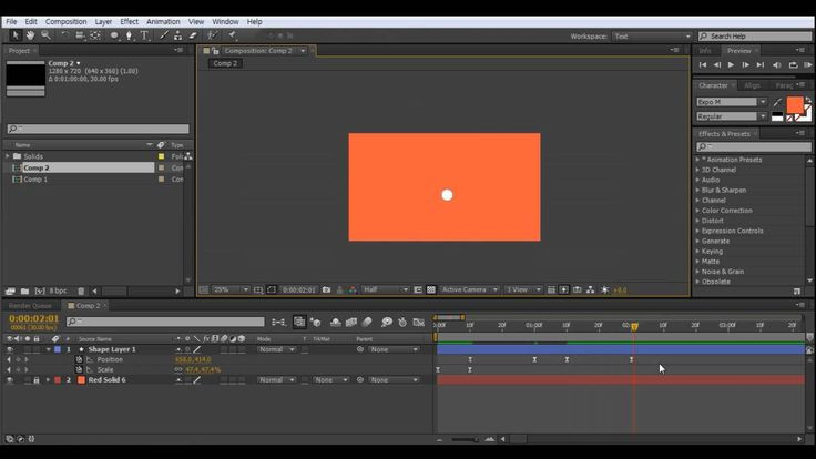 After Effects Motion Graphics Tutorial - Infographic (1)
