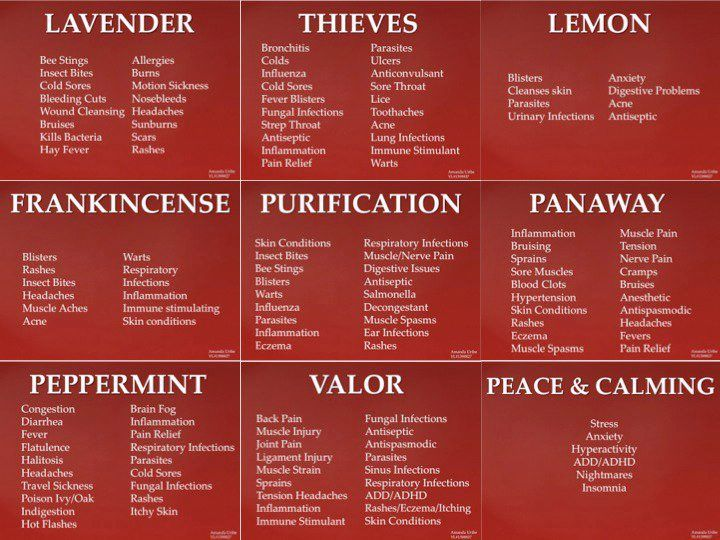 Essential Oil Applications - Uses for oils in the Young Living Everyday Oils Kit