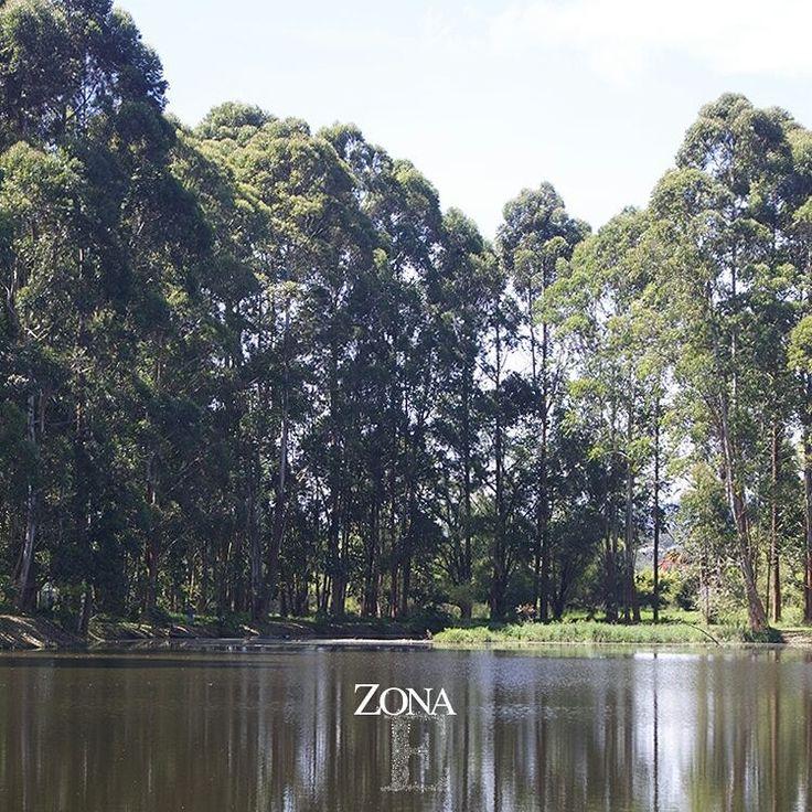 Rodeadas de árboles, agua y fauna silvestre, nuestras tres locaciones son un paraíso sin igual en pleno Llanogrande.    Contáctanos al 3106158616 / 3206750352 / 3106159806 y reserva desde ya, atendemos todos los días de la semana y fines de semana incluido festivos. www.zonae.com   #ZonaE #ElEstablo #ZonaELlangrande #bodasmedellin #CasaBali #Eventos #GreenHouse #BodasAlAireLibre #weddingplaner #BodasCampestres #bodas #boda #wedding #destinationwedding #bodascolombia #tuboda #Love #Bride
