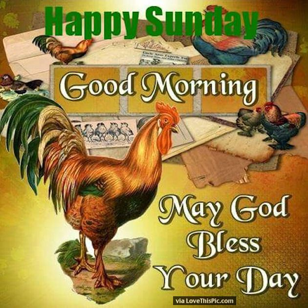 Good Morning Sunday God : Best sunday pictures images on pinterest