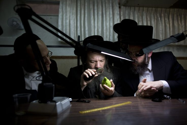 CLOSE INSPECTION: Ultra-Orthodox Jewish men in the Meah Shearim neighborhood of Jerusalem inspected an etrog fruit, or yellow citron, one of...