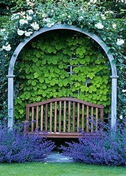 looks like golden hop vine in the nook, along with climbing roses and maybe[?] lavender or catmint in front...lovely
