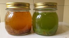 11 fertilizantes e pesticidas orgânicos feitos em casa