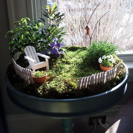 Indoor Fairy Garden Container | note outside our fairy door tonight in hopes that a passing fairy ...