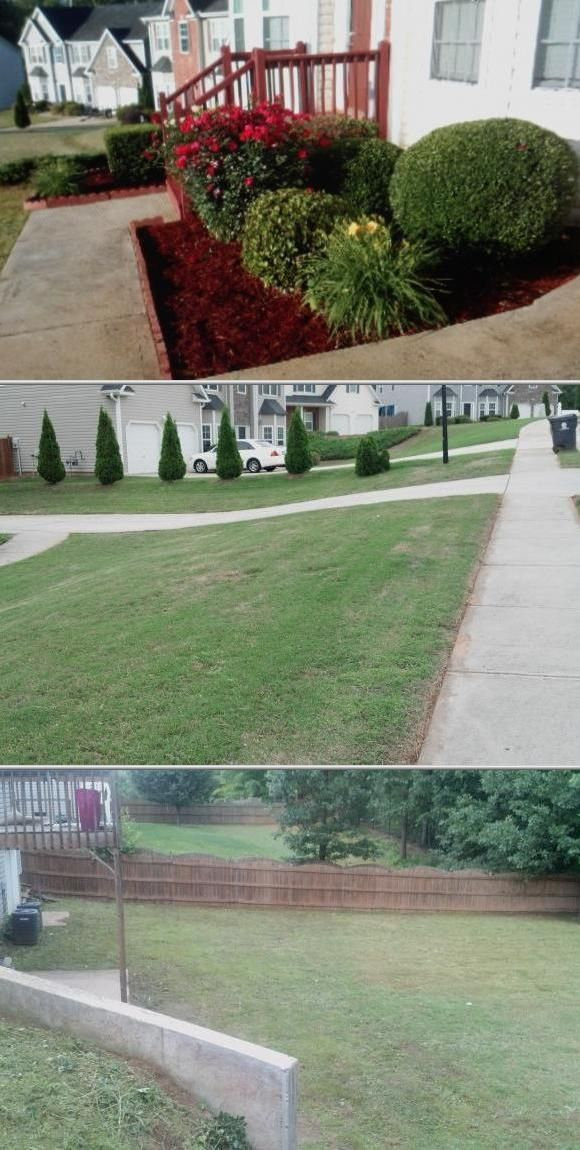 Wayne Robinson runs a well-rounded tree trimming company handling hedge maintenance and gardening services. He is also experienced in tree pruning service and pressure washing jobs. Check his rates.