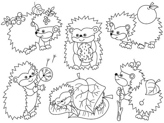 BUY 1 GET 2 FREE Hedgehogs Clipart Digital Vector от TanitaArt