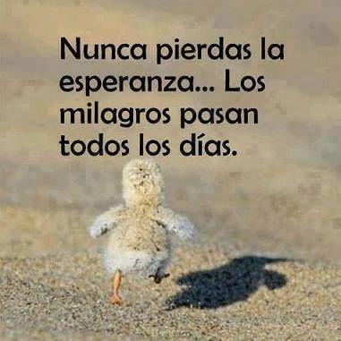 Nunca pierdas la esperanza. Los milagros pasan todos los días