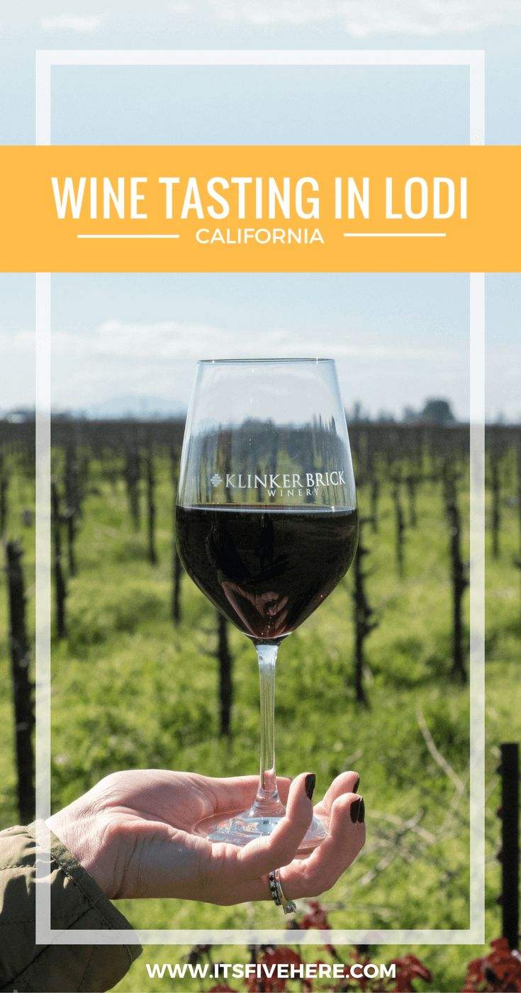 Have you ever gone wine tasting in California? Check out the wineries in Lodi. They're the Zinfandel Capital of the World!