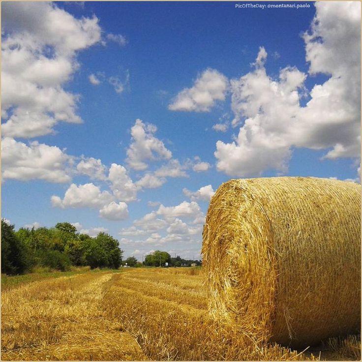 Nuvole e cicale. La #PicOfTheDay #turismoer di oggi si riposa all'ombra di una balla di fieno nella campagna ferrarese. Complimenti e grazie a @montanari.paolo / Clouds and cicadas. Today's #PicOfTheDay #turismoer rests in the shade of a bale of hay in #Ferrara's countryside. Congrats and thanks to @montanari.paolo