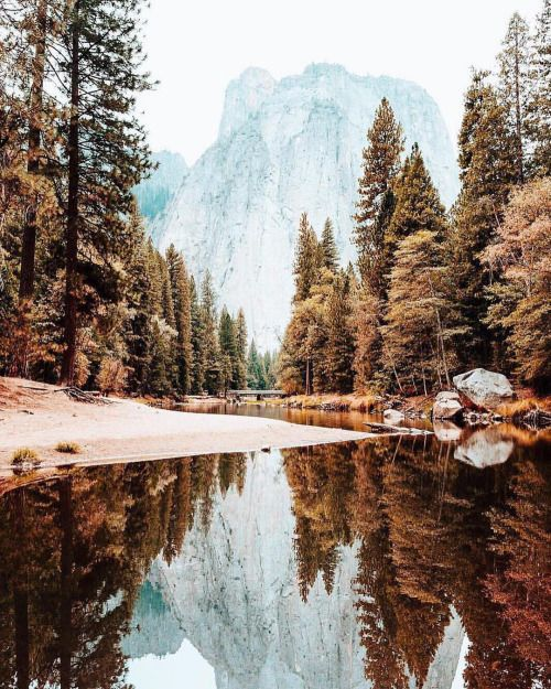 folklifestyle:  Fall colors are our favorite colors. Photo by...