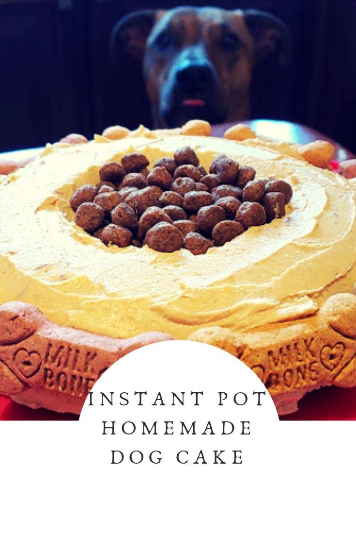 Instant Pot Homemade Dog Treat Cake Recipe Dog Cake Recipes