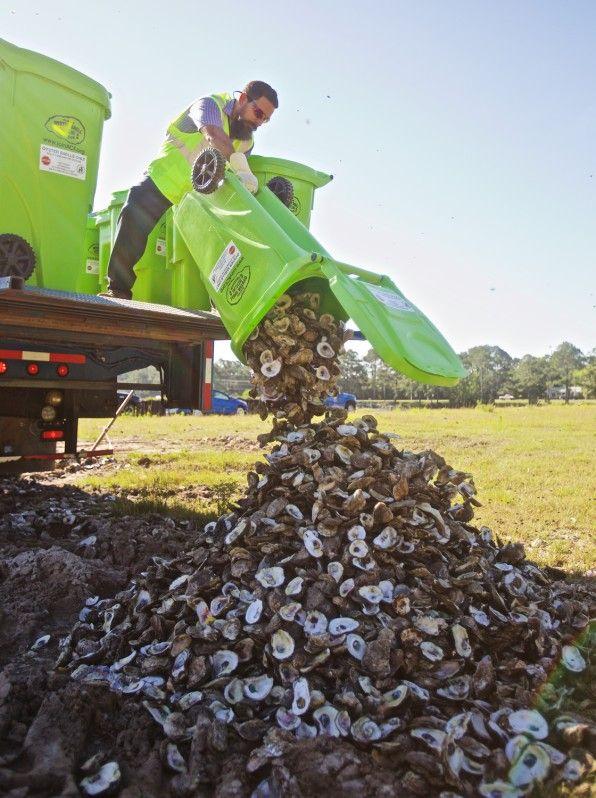 Un partenariat entre une société à but non lucratif et une société de gestion de déchets à Mobile, en Alabama, a déjà détourné 2,8 millions de coquilles d'huîtres provenant de la décharge.…