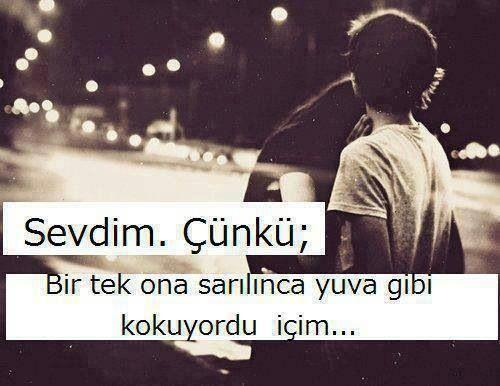 Sevdim çünkü...