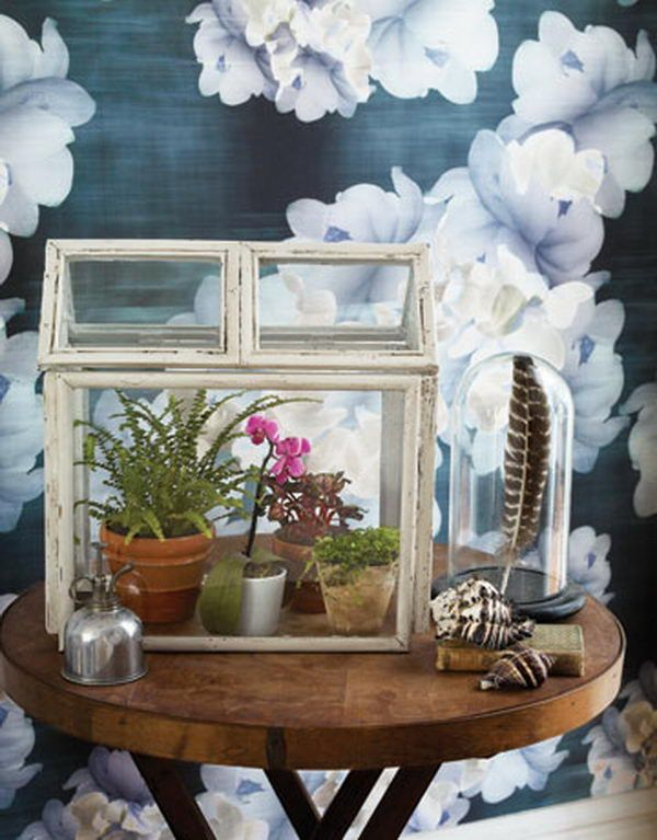 Mini Greenhouse. Recycle old wooden picture frames and build a Victorian style indoor oasis for your hothouse plants. http://hative.com/creative-terrarium-containers/