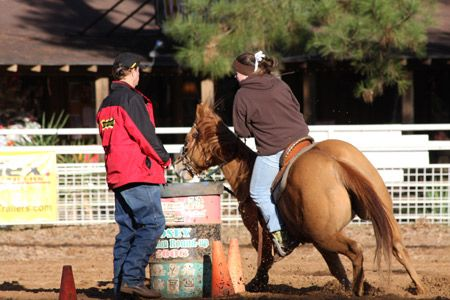 Barrel horses are athletes that must be conditioned