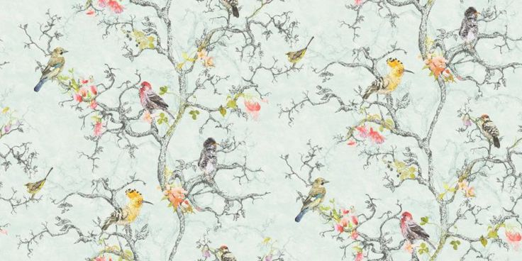 Wallpaper Designs With Birds : Images about spare room on green master