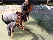 Gator Country Adventure Park - Beaumont TX