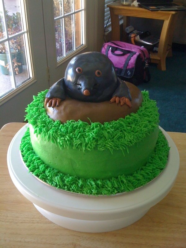 happy mole day. {Jared has requested this cake next year}