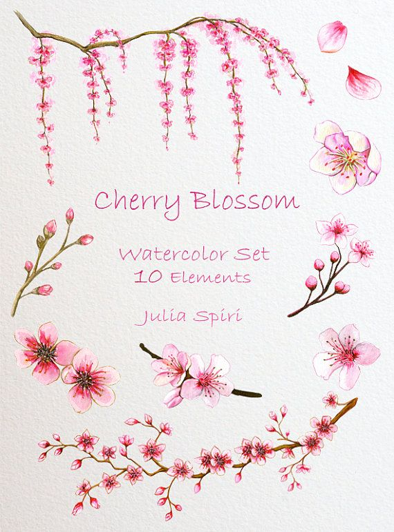 Watercolor Clip Art © JuliaSpiri Cherry Blossom. …