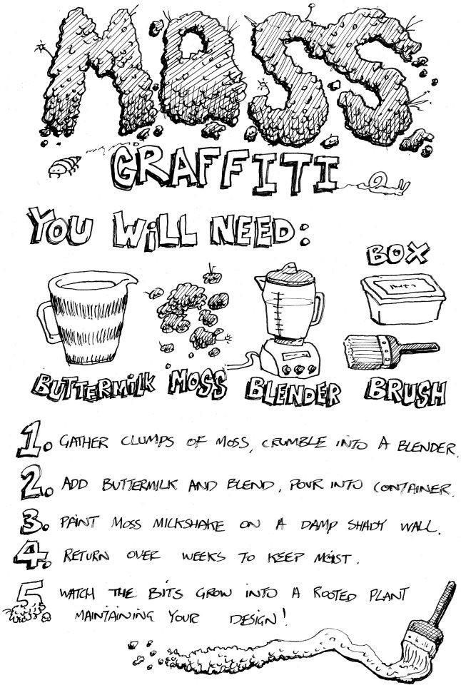 Wirral Wildlife Blog: Moss Graffiti Workshop