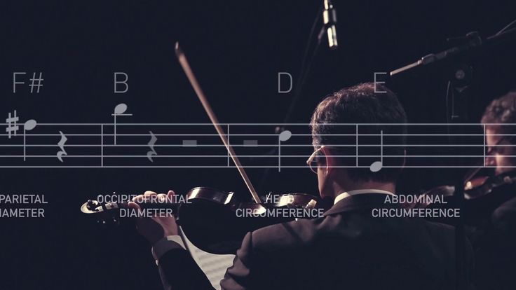 The Welcome Symphony - A mathematician created a formula that transformed the babies' measurements into musical notes