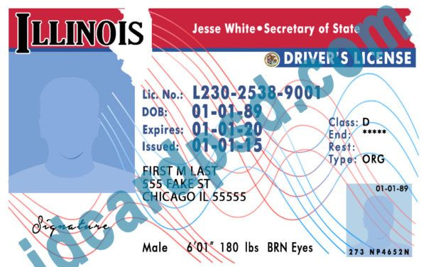 Driver License Passport Id Card Drivers License Psd Templates