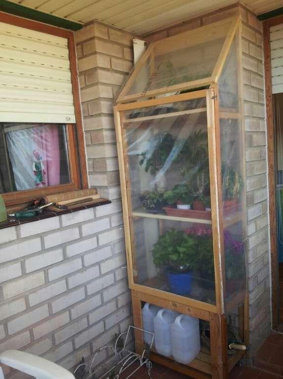 Invernadero En Casa Cómo Hacerlo Y Qué Cultivar Fotos