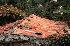 telhado tradicional por Joao viola (pintor joao viola) Tags: roof nature rio vilafacaia telhadobeiralitoral megawaterfal