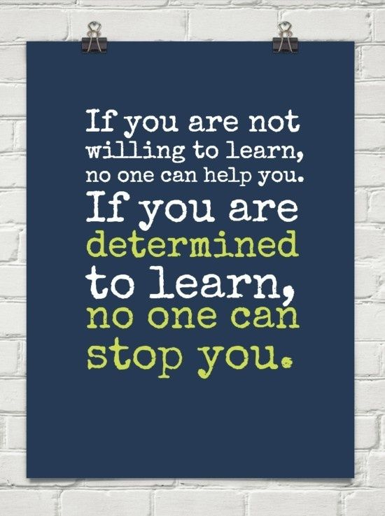 If You Are Not Willing To Learn No One Can Help You If You Are