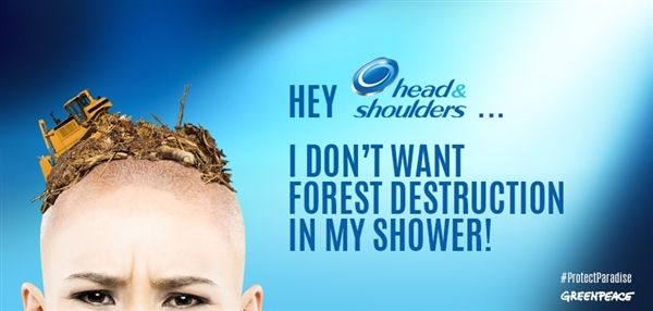 Pulling back the shower curtain: Find out about P&G's dirty secret! | Greenpeace International