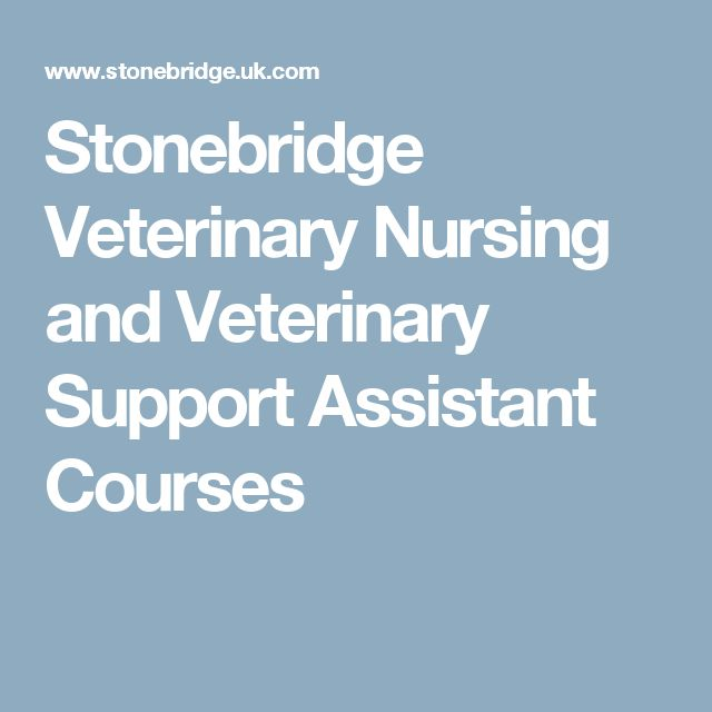 Stonebridge Veterinary Nursing and Veterinary Support Assistant Courses