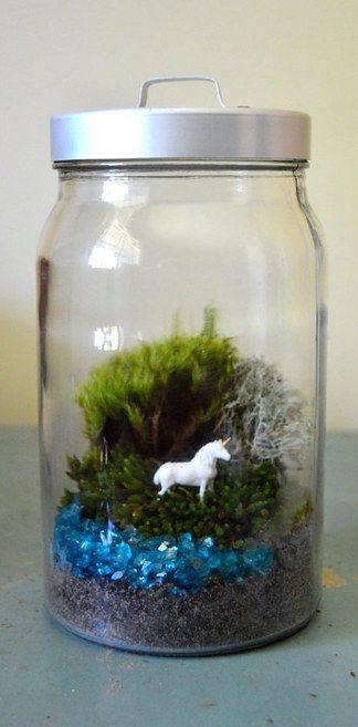 Put a unicorn in the terrarium!!  26 Magical Unicorn Things You Need In Your Life
