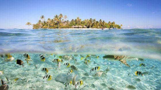 Agli antipodi o quasi, nell'estrema Polinesia, quella oltre la Nuova Zelanda, gli atolli che portano il nome del celeberrimo capitano britannico sono un mix di pace, accoglienza e bellezza