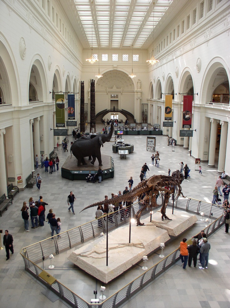 Field Museum of Natural History. 1400 S. Lake Shore Drive, Chicago, Illinois.