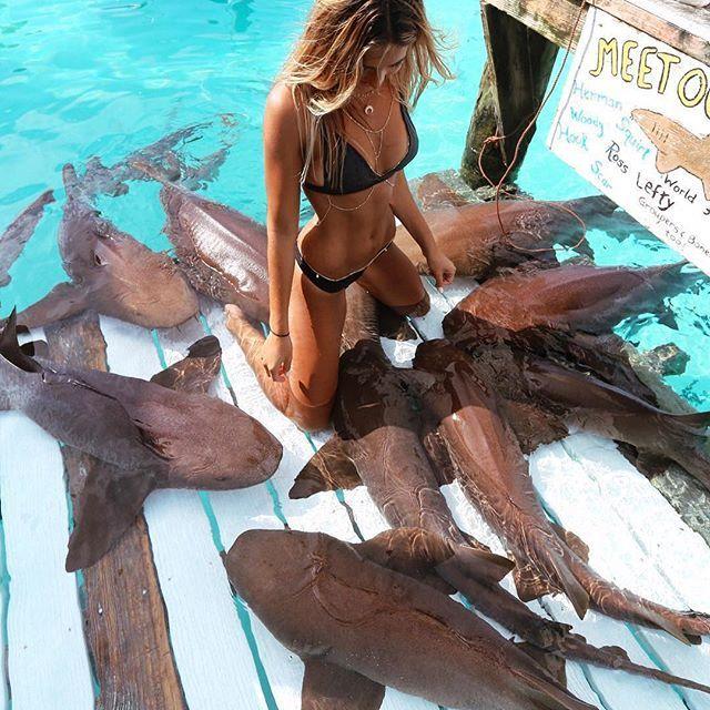 I'm SOO doing this! _ Staniel cay Island, Bahamas
