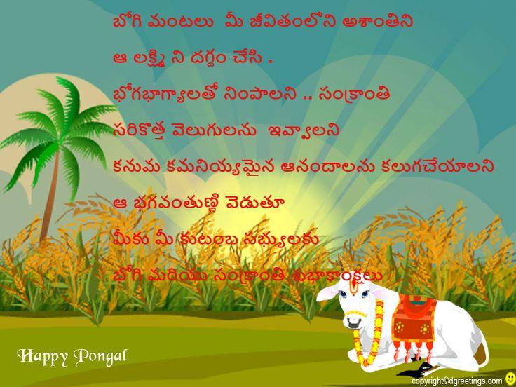 Sankranti festival essay
