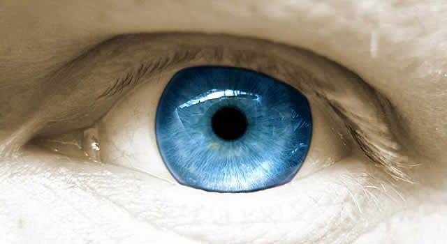Estudo afirma que a transição do pigmento castanho para o azul ocorreu devido a uma mutação genética em um indivíduo que viveu na região do mar Negro há cerca de 7000 anos