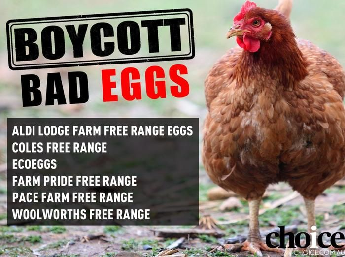 Choice's poster for the boycott which includes brands which run 10,000 hens per hectare (Choice)