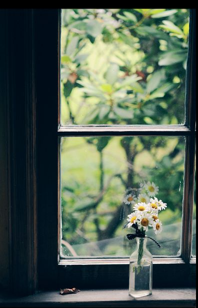 Come to my window...
