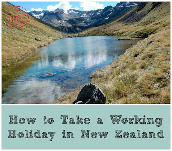 How to Take a Working #Holiday New Zealand - Frayed Passport  #travel #newzealand