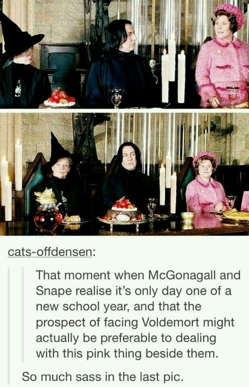 This proof that, when faced with Umbridge, McGonagall's sass levels reached new heights.