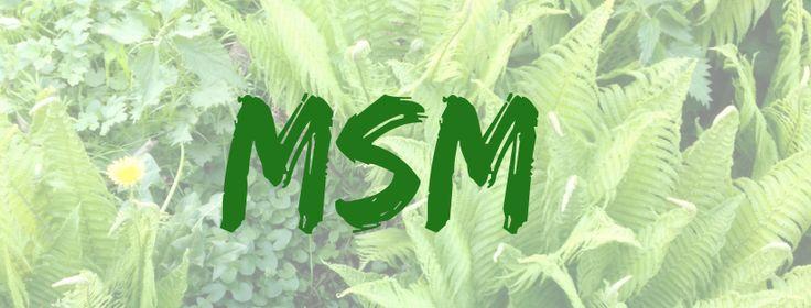 Mit MSM gesund bleiben, Schmerzen lindern und den Körper stärken