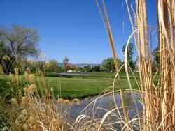 17 Best Images About Grand Junction Golf Courses On Pinterest Mesas Parks And Home