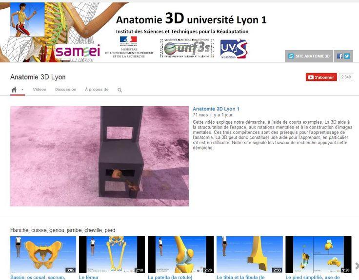 L'anatomie en 3D : les vidéos gratuites de l'Université Lyon 1  L'université Claude Bernard (Lyon 1) met à disposition 104 vidéos en 3D ainsi que des applis Univtv. Ces vidéos ont pour objectif d'améliorer l'apprentissage et l'enseignement de l'anatomie. Elles sont adaptées à l'enseignement secondaire et public.