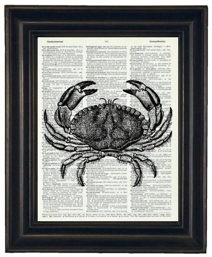 BOGO SALE Sea Life Print Sea Life Art Crab by HamiltonHousePrints