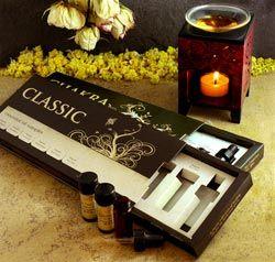 Classic Essential Oil Kit (certified organic eucalyptus, geranium, lavender, peppermint, rosemary, and tea tree oils) $32.00