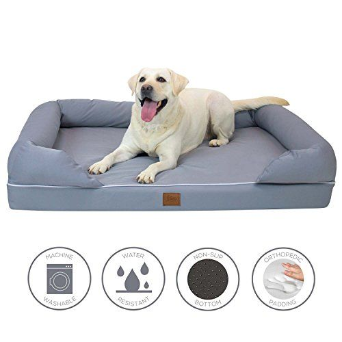 Lux by FrontPet Memory Foam Dog Bed Lounger Premium 4 Orthopedic Dog Bed with Removable Slip Cover and Padded Backrest  XL *** You can find out more details at the link of the image.