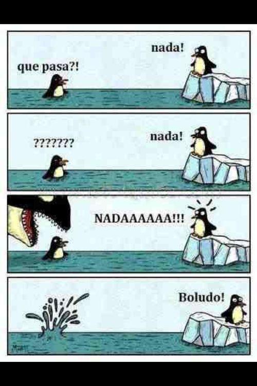 Memes en Español / ¡Nada!  1. ¿Por qué está confundido el pinguino en el agua?…